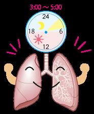 肺の活動時間★仙臺薬局におまかせください