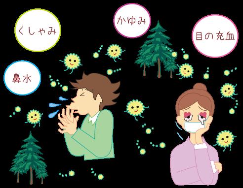 花粉症★仙臺薬局におまかせください